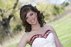 Free Smiling Bride Stock Photography - 14964412