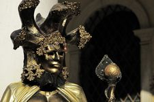 Free Venetian Mask Stock Images - 14965004