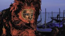 Free Venetian Mask Royalty Free Stock Image - 14965046