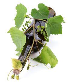 Free Bottle Of Wine Stock Image - 14965601