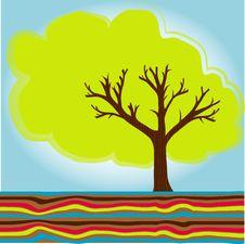 Free Cute Summer Tree Royalty Free Stock Photo - 14966265