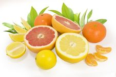 Free Citrus Stock Photo - 14967610