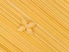 Free Pasta Shells Royalty Free Stock Image - 14968676