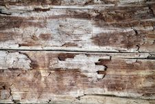 Free Background Closeup Driftwood Stock Photo - 14969070