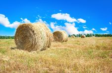 Big Hay Bale Field In Summer Stock Photography