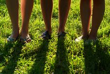 Free Legs On A Grass Stock Photography - 14969862