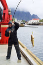 Free Fisherman On The Pier On Lofoten Island Stock Photo - 14970490