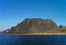 Free Lofoten Island, North Norway Stock Image - 14970491
