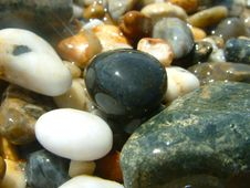 Free Shiny Pebbles On The Cornish Shores Royalty Free Stock Photography - 14970907