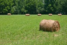 Free Hay Rolls Stock Image - 14971171