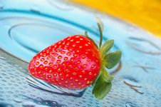 Free Single Strawberry Stock Images - 14971214