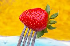 Free Strawberry On Fork Royalty Free Stock Images - 14971249