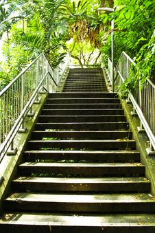 Free Stairway In The Garden Stock Image - 14971801