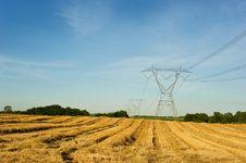 Power Lines Through Wheat Field