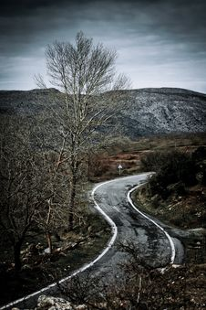 Free Road In The Countryside Royalty Free Stock Images - 14972949