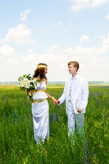 Just Married Couple On Field Royalty Free Stock Image