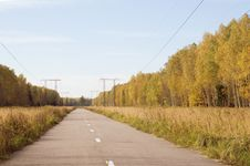 Free Asphalt Road In Autumn Stock Images - 14973054