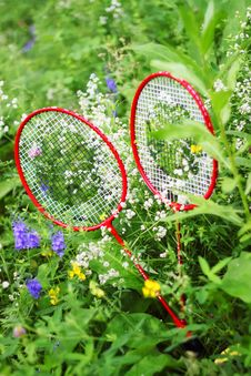 Free Two Racket Stock Photos - 14977213