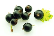 Free Black Currant Royalty Free Stock Images - 14979079
