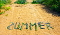 Free Flower Summer Royalty Free Stock Photos - 14980728