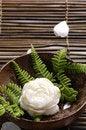 Free Spa Still Life Royalty Free Stock Photos - 14986748