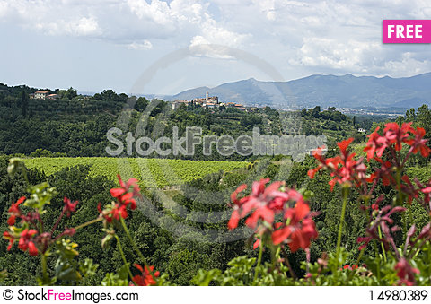 Free Flower Framed View Of Tuscan Vineyards & Villa Royalty Free Stock Images - 14980389
