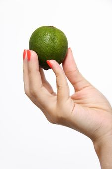 Free Holding Up A Lime Stock Photography - 14981402
