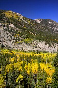 Free Scenic Landscape Of Colorado Royalty Free Stock Photos - 14982958