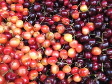 Free Cherries Stock Images - 14983764