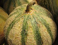 Free Sugar Melon Royalty Free Stock Photos - 14983948