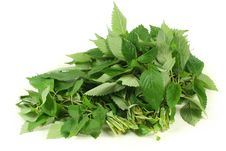 Free Mint Leaves Stock Images - 14985784