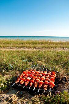 Free Cooking Near Sea Stock Photo - 14987020