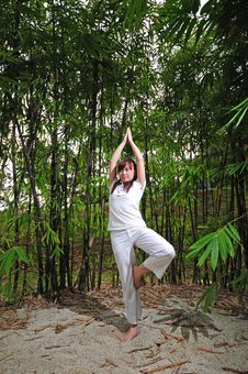 Free Asian Woman Practising Yoga In Woods Stock Photo - 14987720