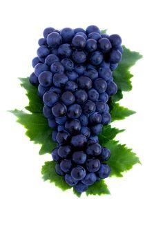 Free Grapes Royalty Free Stock Photos - 14987958