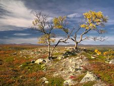 Free Colorful Autumn Landscape Stock Image - 14988401