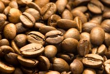 Free Roasted Coffee Beans Stock Images - 14989844