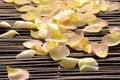 Free Petals Royalty Free Stock Photography - 14998467