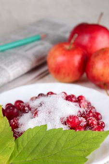Free Newspaper, Cowberry And Red Apples Royalty Free Stock Photography - 14992947