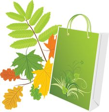 Free Package On The Leafy Background Stock Photos - 14993823