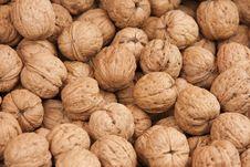 Free Walnuts Royalty Free Stock Photos - 14994028