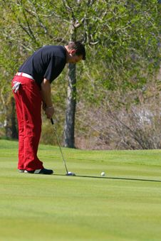 Free Male Golfer Royalty Free Stock Photos - 14996348