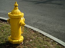 Free Bright Yellow Hydrant Stock Photography - 14996512