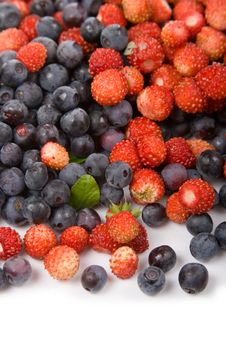 Free Wild Strawberries And Blueberries Stock Images - 14997664