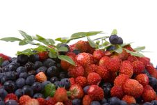 Free Wild Strawberries And Blueberries Stock Photo - 14997670