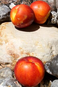 Three Nectarines On Stones Royalty Free Stock Photo