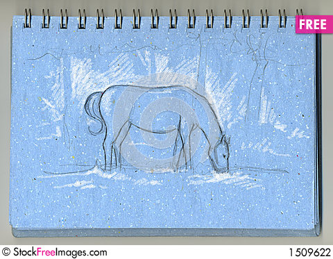 Horse eating grass- sketchbook Stock Photo
