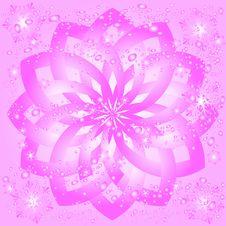 Ice Pink Rosette Stock Photos
