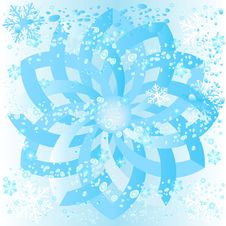 Free Ice Rosette Stock Images - 1500224
