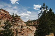 Free Zion National Park Royalty Free Stock Images - 1501409
