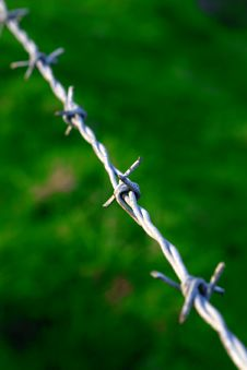 Free Barbed Wire Fence 4 Royalty Free Stock Image - 1503906